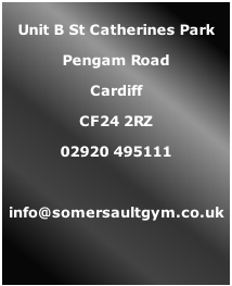 Unit B St Catherines Park Pengam Road Cardiff CF24 2RZ 02920 495111  info@somersaultgym.co.uk